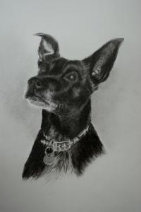 Ozzie drawing finished
